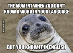 awkseal knowitinenglish