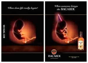 baby bacardi