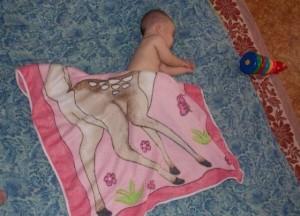 baby centaur deer