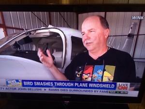 bird and windshield shirt