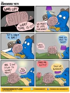 brain wakeup