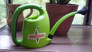 brawndo can