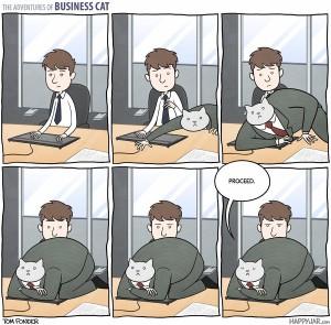 businesscat keyboard