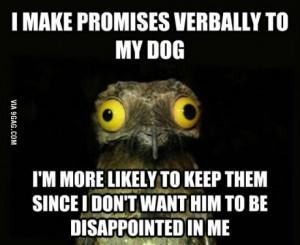 crazyawk promises
