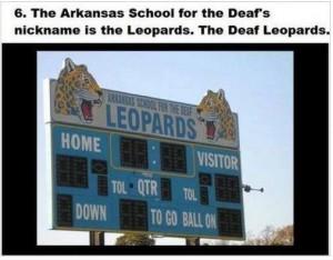 deaf leopard