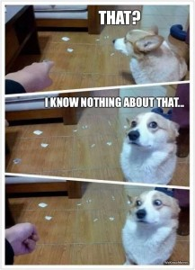 dog iknownothinaboutthat