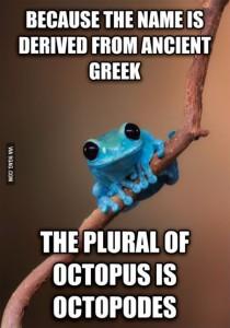 fact octopus