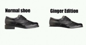 ginger shoe