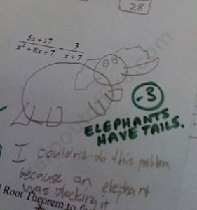 hw elephants have tails