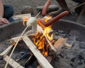 nanner fire