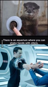 otter handshake