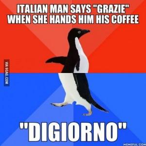 penguin digiorno