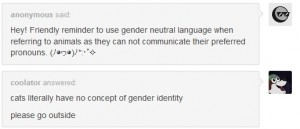 pet gender pronouns