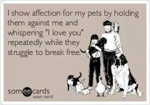 pet struggle