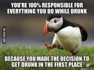 puffin drunk responsibility