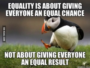 puffin equality