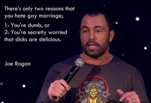 reasons to hate gay marriage
