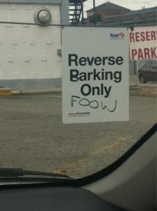 reverse barking