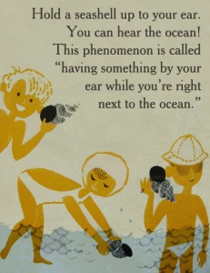 seashell phenomenon