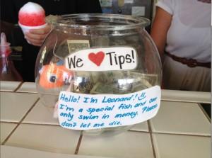 swim in tips