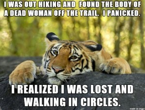 tiger walkingincircles