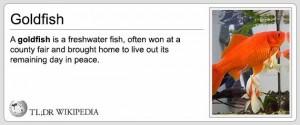 tldrw goldfish