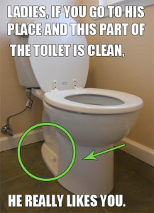 toilet cleaning spots