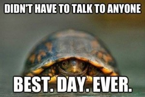 turtle best day ever