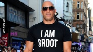 vin is groot
